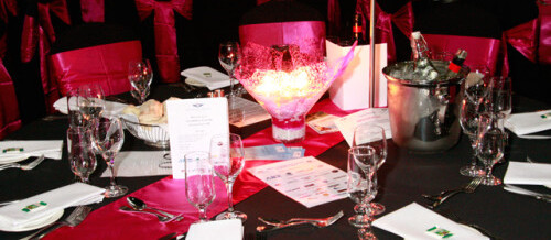 RFDS Wings for Life Ball