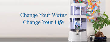 Zazen Alkaline Water System